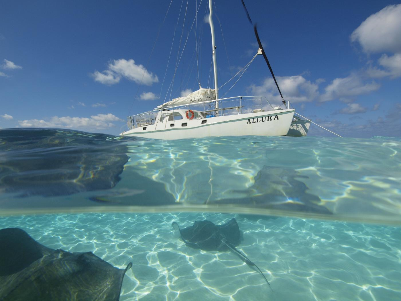 Best Time To Travel To Grand Cayman Islands